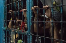 132 inmates escape in southern Philippines