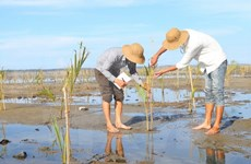 Vietnam asserts role in ASEAN cooperation in environment