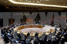 Vietnam calls on UN to prioritise long-term conflict prevention