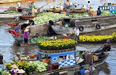 Mekong Delta city targets 5.6 million tourists in 2017
