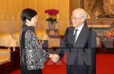 Chinese association vows to nurture relations with Vietnam