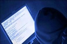 Cyber attack losses increase in 2016