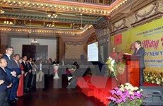 HCM City sees fruitful cooperation year with int'l partners