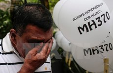 Malaysia allows private search for missing MH370
