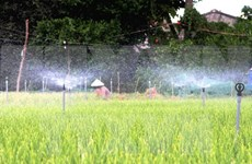 Mekong Delta province makes investment in irrigation