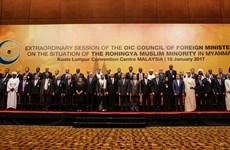 Islamic Organisation to send delegation to Myanmar
