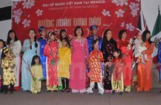 Vietnamese nationals in Mexico celebrate Tet