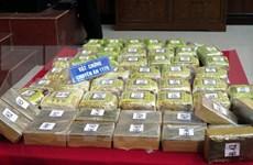 Nam Dinh police bust drug trafficking ring