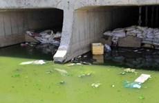 Pollution degrades marine biodiversity