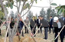 President calls for widespread response to tree planting festival