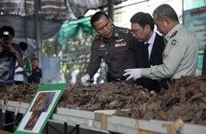 Thailand seizes three tonnes of pangolin scales