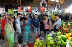 Travel increases during Tet holiday in many localities