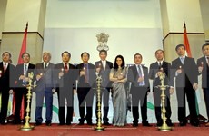 India hopes to beef up ties with HCM City