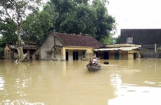 Binh Dinh builds houses for flood victims