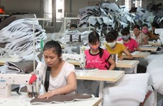 Newly-established firms register high capital in January