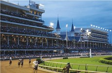 Government approves horse, dog racing gambling