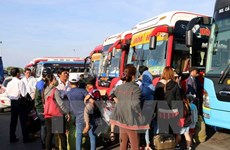 Violating coach operators forced to halt operations