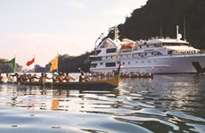 Binh Dinh welcomes first sea tourists of new lunar year