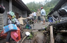 Indonesia: 12 people killed in landslides
