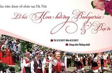 Record rose fest to bloom in Hanoi