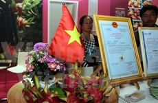 Vietnam's dragon fruits introduced at Berlin international fair