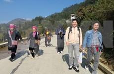 Lao Cai develops sustainable tourism