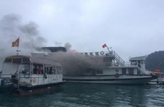 Quang Ninh suspends tourist boat fleet after fire