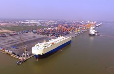 Firms slam Hai Phong's rocketing port fees