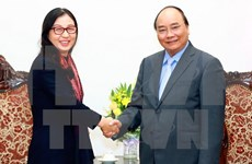 PM lauds Huawei Group's contribution to IT growth in Vietnam