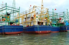 Binh Dinh hands over eight fishing ships to seamen
