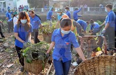 Action month to call for more efforts in environmental protection