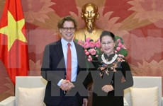Vietnam looks forward to stronger ties with Sweden, Hungary