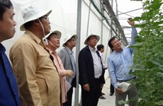 Champasak gains insight into HCM City's agricultural development