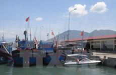 Thanh Hoa develops fishery logistics fleet