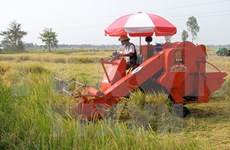 HCM City enhances mechanisation of agriculture