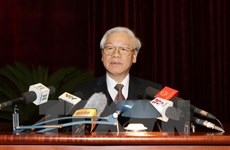 Party chief directs Party inspection, supervision in 2017