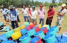 VietGap a windfall for shrimp farmers