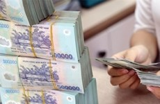Vietnam to recoup 2.6 billion USD bad loans