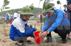 USAID programme helps protect environment in Nam Dinh
