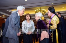 Japanese Emperor's Vietnam visit attracts media attention
