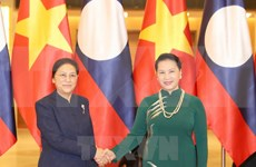 Vietnamese top legislator holds talks with Lao counterpart
