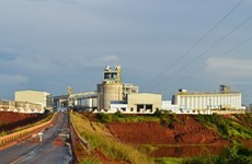 Dak Nong to carry out bauxite project