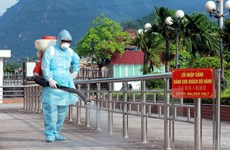 Da Nang city on alert for H7N9 outbreaks
