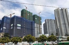 HCM City property firms aim for cooperation, stability