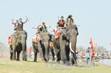 Elephant, boat races held in Buon Ma Thuot coffee festival
