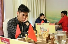 Vietnamese, Chinese players share top place at chess tourney