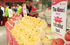 Vietnam's fruit and vegetable imports up 55 percent