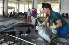Nearly 165 billion VND for fisheries restructuring in 2017-2020