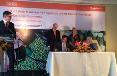VN, Netherlands to up agriculture ties