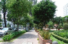 HCM City to open street vendor areas